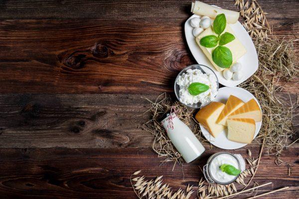 yogurt fatto in casa e formaggio a pasta cruda